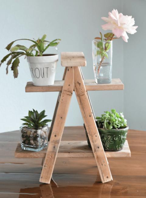 wooden shelving green plants