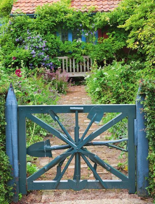 blue gate climbing plants