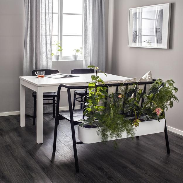 indoor plants bench planter