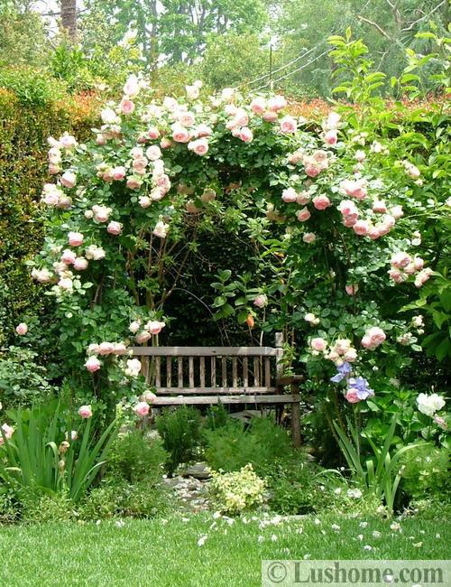 beautiful landscaping ideas garden design