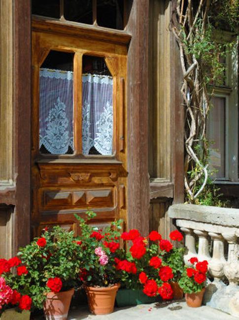 terra cotta pots summer flowers